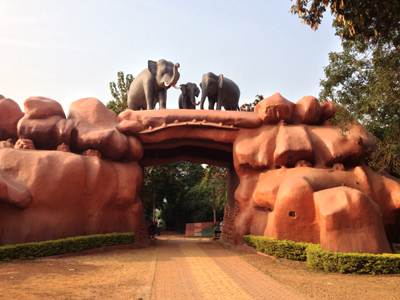 Chandaka elephant sanctuary bhubaneswar